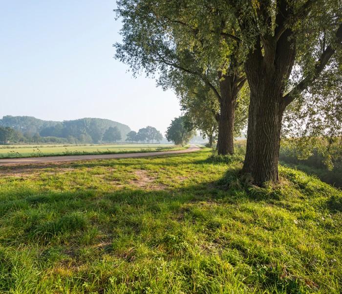 Natura 2000 Buurserzand & Haaksbergerveen