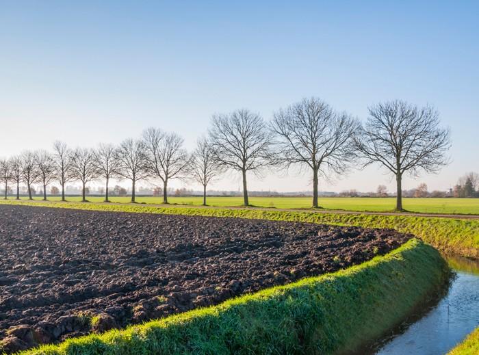 Extra ruilgrond voor ruilverkaveling bij Natura 2000